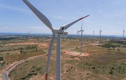 Năng lượng hóa thạch sẽ thất thế trước năng lượng tái tạo?