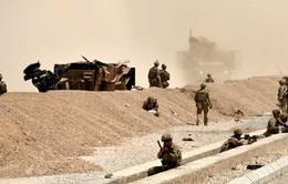 Đánh bom liều chết nhằm vào đoàn xe hộ tống của NATO ở Afghanistan