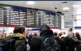 Doanh thu ngành hàng không Mỹ sẽ tăng mạnh nhờ Lễ Tạ ơn