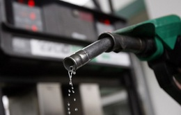 """OPEC """"bất lực"""" trước dầu đá phiến từ Mỹ?"""