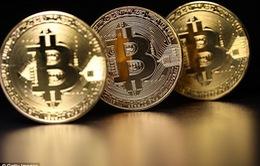 Anh chàng vô tình ném 107 triệu USD Bitcoin vào thùng rác lúc dọn nhà
