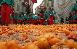 Vui nhộn ngày hội ném cam tại Italy