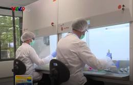 Đột phá công nghệ tế bào giúp tự tái tạo các bộ phận trên cơ thể người
