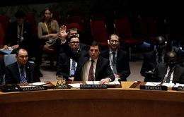 Nga, Trung Quốc phủ quyết dự thảo Nghị quyết cấm vận Syria