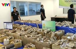 Thái Lan thu giữ 300 kg ngà voi