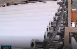 Ngành sản xuất giấy và bao bì tìm giải pháp ổn định sản xuất