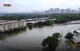 Cộng đồng người Việt tại Houston khắc phục hậu quả bão Harvey