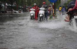 Cần Thơ: Có dự án chống ngập nhưng vẫn ngập
