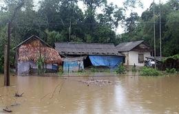 Mưa lớn gây thiệt hại tại Hà Tĩnh