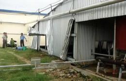 Phú Yên: 5 công nhân tử vong khi xuống hầm chứa mắm