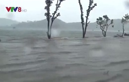 Nghệ An đã sơ tán hơn 17.000 người khỏi vùng nguy hiểm