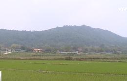 Tạm dừng dự án lấy rừng phòng hộ xây nghĩa trang tại Vĩnh Phúc