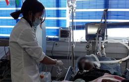 Lai Châu: 7 người tử vong, 11 người cấp cứu nghi bị ngộ độc thực phẩm