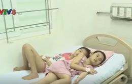 Hà Tĩnh: Hàng loạt học sinh bị ngộ độc nghi ăn quả cây ngô đồng