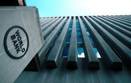 Sai phạm trong sử dụng vốn vay Ngân hàng Thế giới