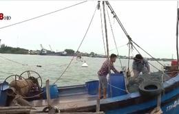 Khẩn trương liên lạc, ứng cứu tàu cá cùng 8 ngư dân bị nạn