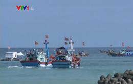 Ngư dân Quảng Ngãi quyết tâm bám biển, bám ngư trường