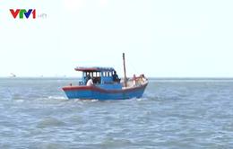 Gia tăng tình trạng ngư dân bị bắt do đánh bắt hải sản trái phép