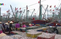 Nghệ An: Ngư dân được mùa khai thác thủy sản đầu năm
