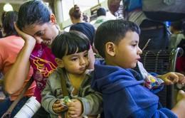 Hội đồng châu Âu bày tỏ quan ngại về luật tị nạn mới của Hungary
