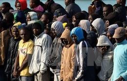 Chính quyền Mỹ dốc toàn lực trục xuất người nhập cư trái phép