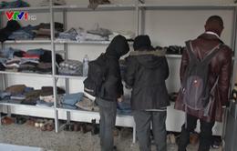 Cuộc sống mới cho những người tị nạn tại Bỉ