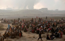 Quốc tế lo ngại về sự an toàn của dân thường tại Mosul, Iraq