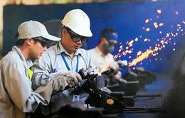 Nguy cơ mất việc làm trước tuổi 35 và câu chuyện bảo vệ quyền lợi cho người lao động