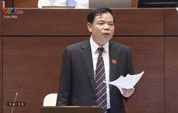 Xem lại Phiên chất vấn và trả lời chất vấn Bộ trưởng Bộ NN&PTNT Nguyễn Xuân Cường