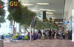 """Nhà ga """"không nhân viên"""" ở sân bay Changi (Singapore) khai trương trong năm nay"""