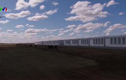 Tỷ phú Elon Musk xây dựng thành công nhà máy dự trữ điện lớn nhất thế giới