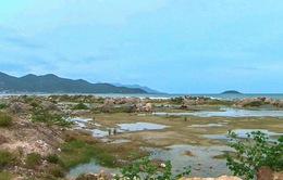Khánh Hòa ngừng thực hiện dự án Nha Trang Sao
