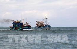 Giám sát chặt việc nhấn chìm bùn thải ở Bình Thuận