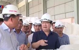 Phó Thủ tướng Trịnh Đình Dũng thăm, làm việc tại nhà máy Alumin Nhân Cơ