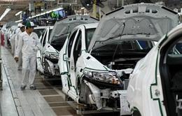 Nhập khẩu ô tô: Có doanh nghiệp cố khai giá thấp để trốn thuế