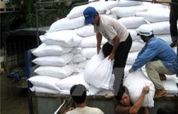 Philippines sẽ thay đổi cơ chế nhập khẩu gạo