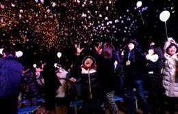 Người dân Nhật Bản náo nức đón năm mới 2017