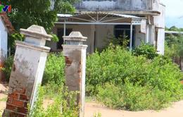 Hỗ trợ gia đình trong vùng dự án muối Quán Thẻ do sự cố nhiễm mặn