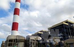 Long An đầu tư nhiệt điện, người dân lo ngại ô nhiễm nguồn nước