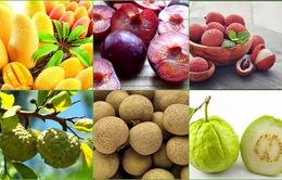 Những loại quả càng ăn càng nổi mụn