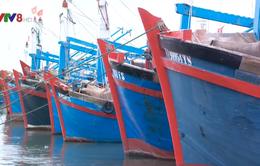 Ninh Thuận đảm bảo an toàn các khu vực xung yếu