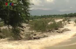 Ninh Thuận khẩn trương tìm kiếm thi thể các nạn nhân bị lũ cuốn trôi