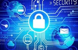 Ba Lan và Phần Lan hợp tác về vấn đề an ninh mạng