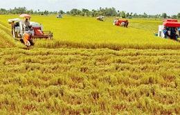 Đầu tư xã hội vào nông nghiệp thấp