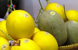 Xuất khẩu nông sản Việt Nam đạt kỷ lục mới