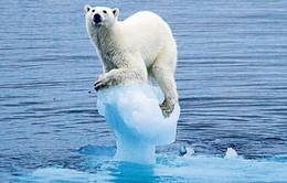 Trái đất sẽ càng nóng hơn sau khi Mỹ rút khỏi Hiệp định Paris