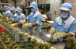 Nhiều doanh nghiệp xuất khẩu thực phẩm vào Mỹ bị hủy mã số kinh doanh