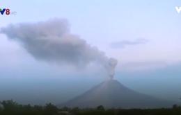"""Núi lửa đồng loạt """"thức giấc"""" tại Indonesia và Nhật Bản"""