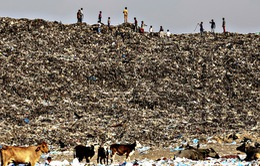 Thải ra 140.000 tấn rác/ngày, Ấn Độ khủng hoảng rác thải