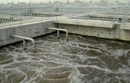 Cần Thơ - Hiroshima hợp tác xử lý nước thải
